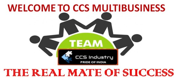 CCS MULTIBUSINESS